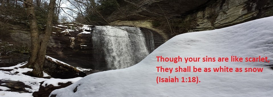 Snow and Waterfall Pic 970x340